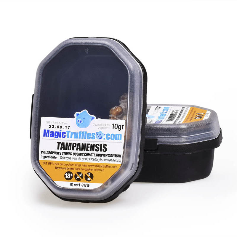 Tampanensis 10g psychedelic truffles