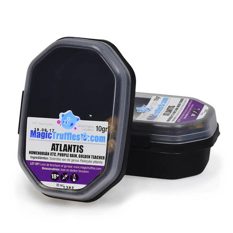 Magic Truffles atlantis