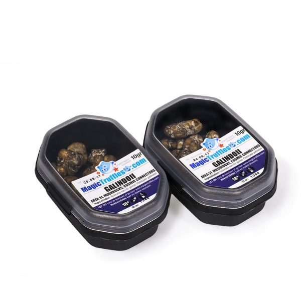 Magic truffles Galindoii 10g